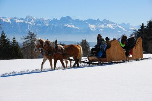 Romantická projížďka na saních tažených koňmi pohádkovou krajinou Jižního Tyrolska.