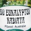 BIO Eukalyptus Radiata_V